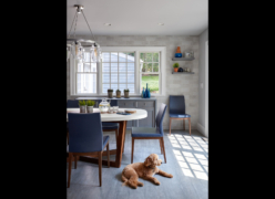 Kitchen featuring dog (1)